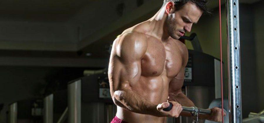 Bodybuilding Benefits